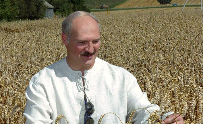 Александр Лукашенко во время посещения кооператива под Гродно