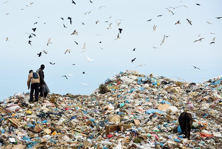 Беженцы из Ганы и Гвинеи ищут еду на мусорной свалке в Фнидеке, Марокко