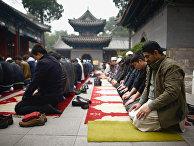 Мусульмане во время молитвы в мечети в Пекине