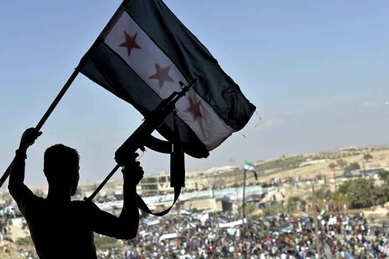 Акция протеста против наступления правительственных войск на Идлиб