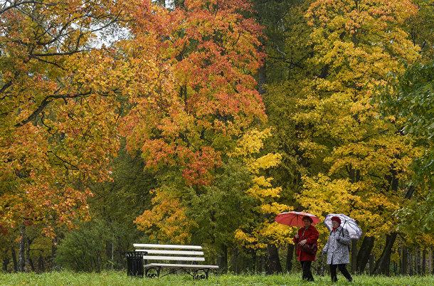 Посетители Александровского парка в Санкт-Петербурге