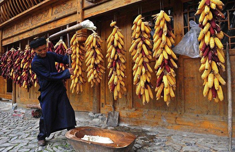 Представитель народности Миао готовит еду к празднику «Гузанг»
