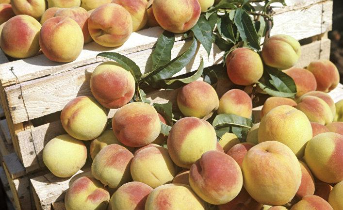 Персики. Архив