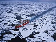 Северный морской путь пройдет вблизи мест проживания малочисленных народов Севера