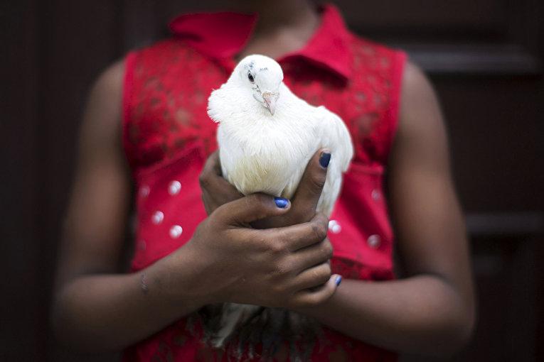 Хильян Кабалльеро продает голубя для использования в ритуалах сантерии