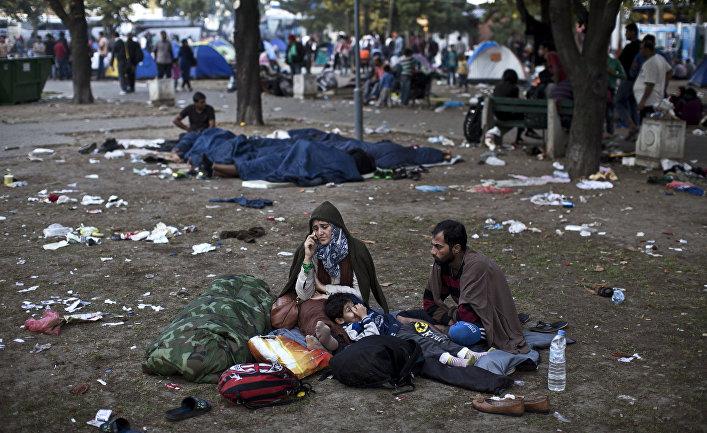 Беженцы из Сирии в парке в Белграде