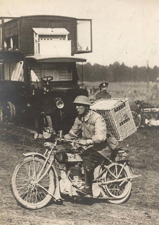Британский солдат везет голубей на линию фронта
