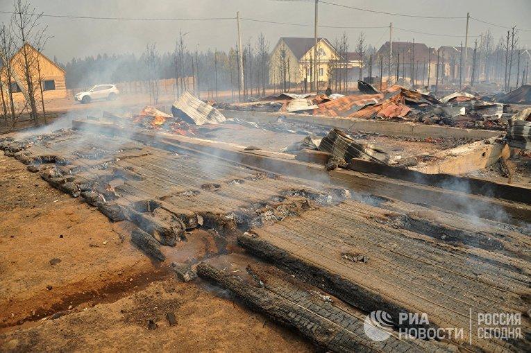 Последствия лесного пожара в Забайкальском крае