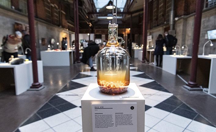 Вино на мышах в Музее отвратительной еды в Мальмё, Швеция