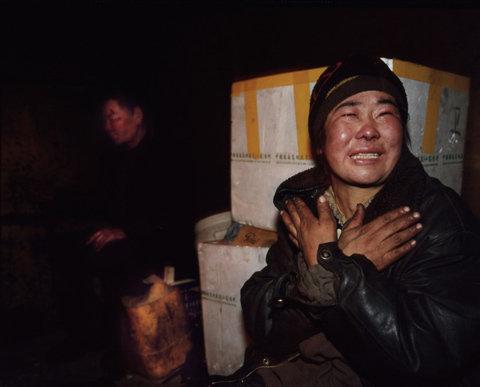 Бездомные в Монголии