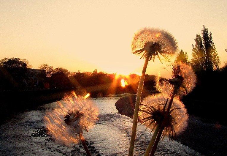 Закат на реке Уж