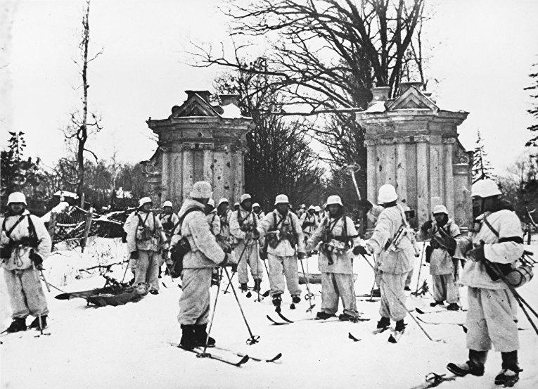 Финский батальон быстрого реагирования