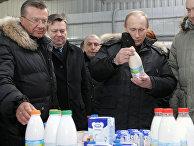 Премьер-министр РФ Владимир Путин на ЗАО «Племенной завод «Гражданский», 2010 год