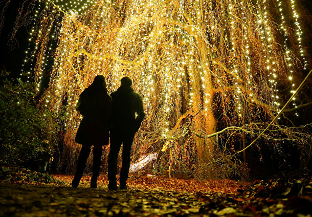 Берлинский ботанический сад украсили к Рождеству