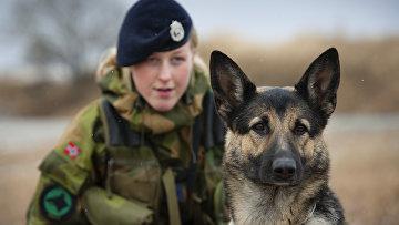 Женщина— офицер норвежских ВВС исобака