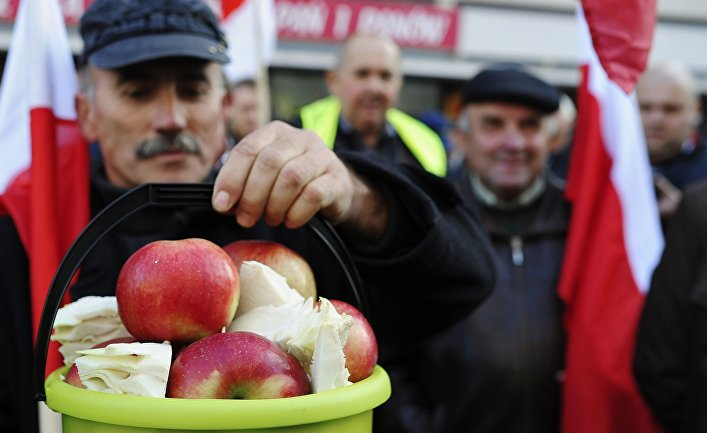 Акция протеста фермеров и садоводов Польши в Варшаве