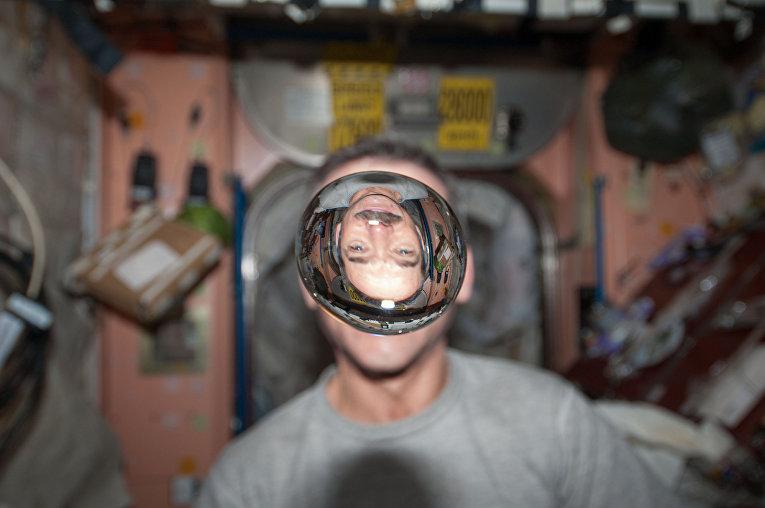 Астронавт канадского космического агентства и инженер 34 экипажа Международной космической станции Крис Хэдфилд