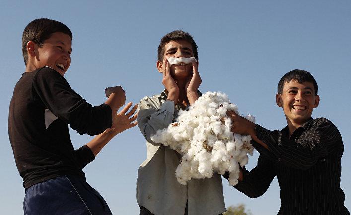 Сбор хлопка в окрестностях Ахшабада