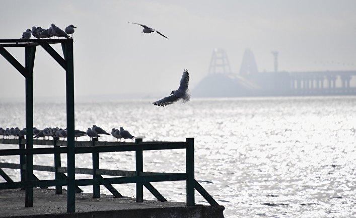 Вид на Керченский пролив с набережной в Керчи