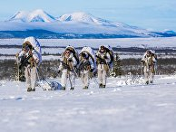 Норвежские военные