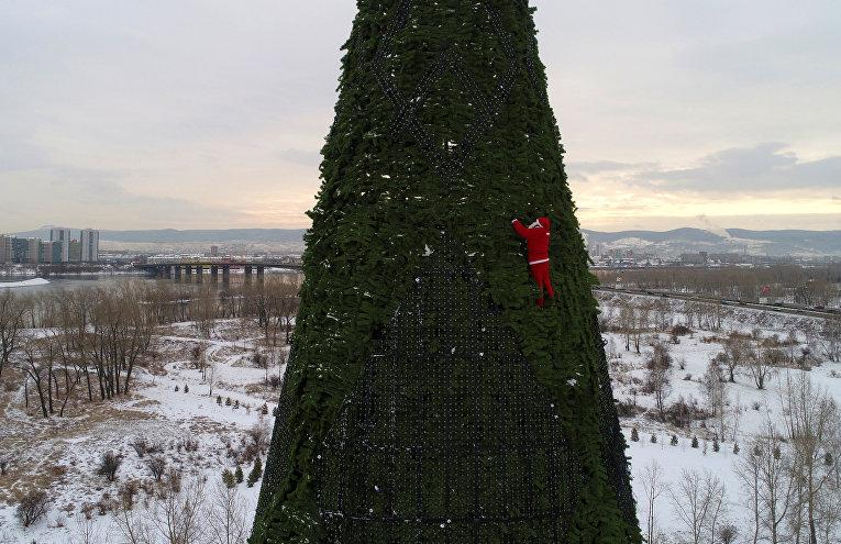 Альпинист в костюме Деда Мороза украшает 57-метровую елку в Красноярске