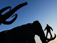 Мужчина стоит на бивне скульптуры мамонта
