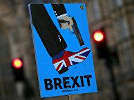 Плакат во время акции протесчта в Лондоне