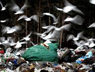 """Полигон для утилизации бытовых отходов """"Ашитково"""""""