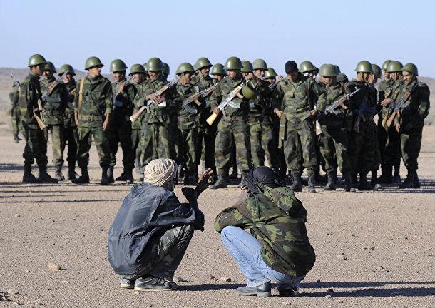 В Африке Алжир импортировал свыше половины всего поставленного на континент вооружения