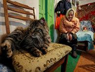 Пенсионерка в своем доме в селе Скрыгаловка Киевской области