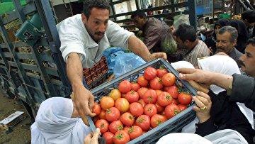 Продажа помидоров на рынке в городе Газа