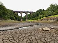 Пересохший участок водохранилища Wayoh в Англии