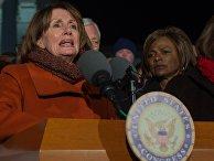 Нэнси Пелоси выступает на митинге против указа Трампа об эмигрантах в Вашингтоне