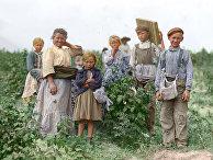 1909. Польские рабочие-иммигранты в США
