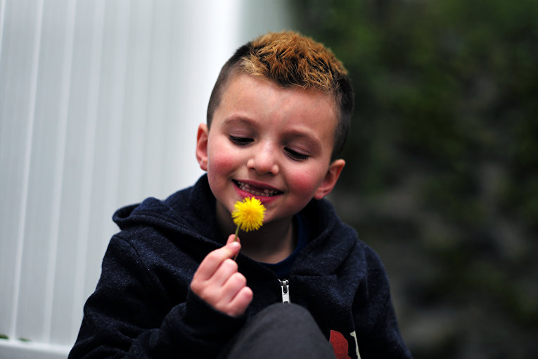 7-летний мальчик-трансгендер Джейкоб Лемей, Мелроуз, Массачусетс, США