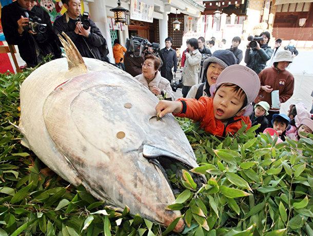 Океаны и чрезмерный вылов рыбы