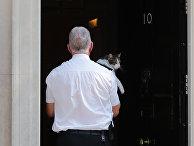 Кота Ларри несут в резиденцию премьер-министр Великобритании на Даунинг-стрит, 10, Лондон