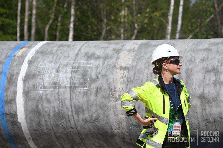 """Строительство газопровода """"Северный поток-2"""" в Ленинградской области"""