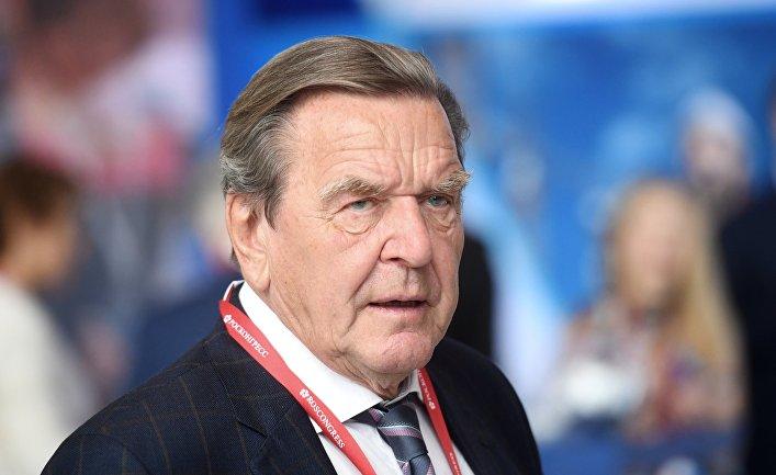 Петербургский международный экономический форум. Герхард Шредер