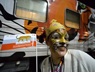 Поезд «Москва-Владивосток», тематически оформленный вчесть празднования Дня тигра