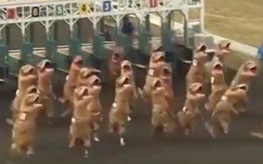 Забег тираннозавров: кто быстрее?