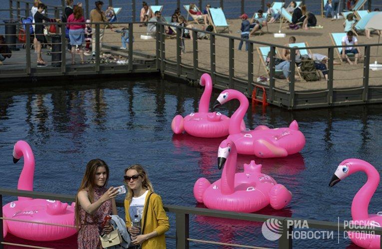Пляж с розовыми фламинго открылся в Новой Голландии в Санкт-Петербурге