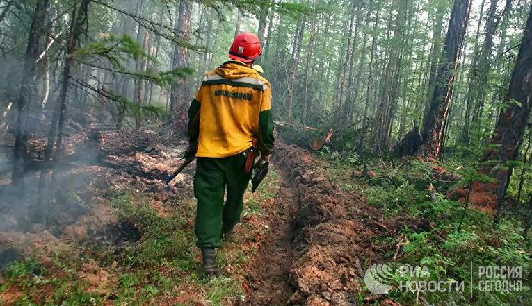Ликвидация лесных пожаров в Красноярском крае и Иркутской области