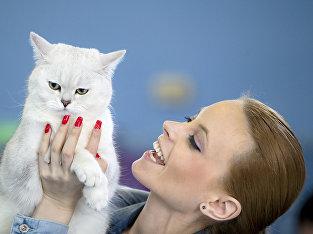 Кошка и хозяйка