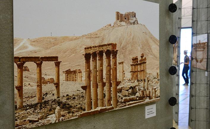 """Международный архитектурный форум """"Пальмира 2017 – начало возрождения"""""""