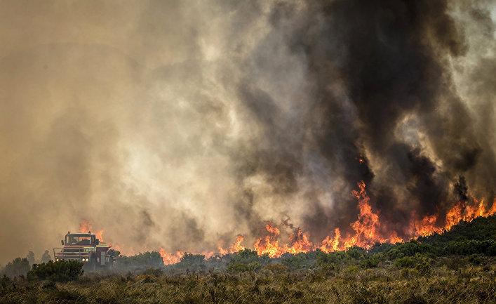 Лесной пожар недалеко от Кейптауна, Южная Африка