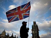 Протестующий против Brexit у здания парламента в Лондоне, Великобритания