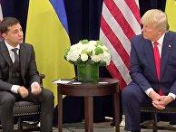 Трамп - Зеленскому: вы бы с Путиным могли все решить