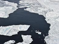 Льдины в Северном Ледовитом океане вблизи архипелага Земля Франца-Иосифа
