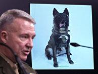 Генерал морской пехоты США Кеннет Маккензи
